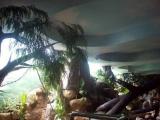 Океанариум Тропическая амазонка