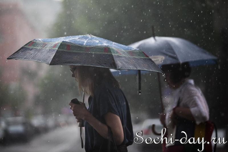 Сезон дождей в Сочи
